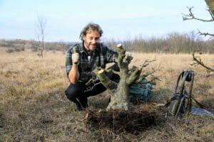 Yamadori – Bäume sammeln in der Natur