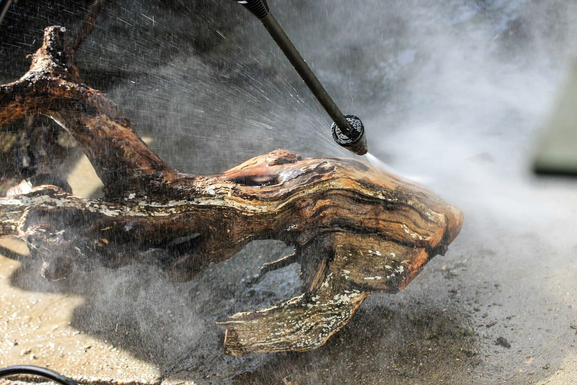 Totholz beim reinigen