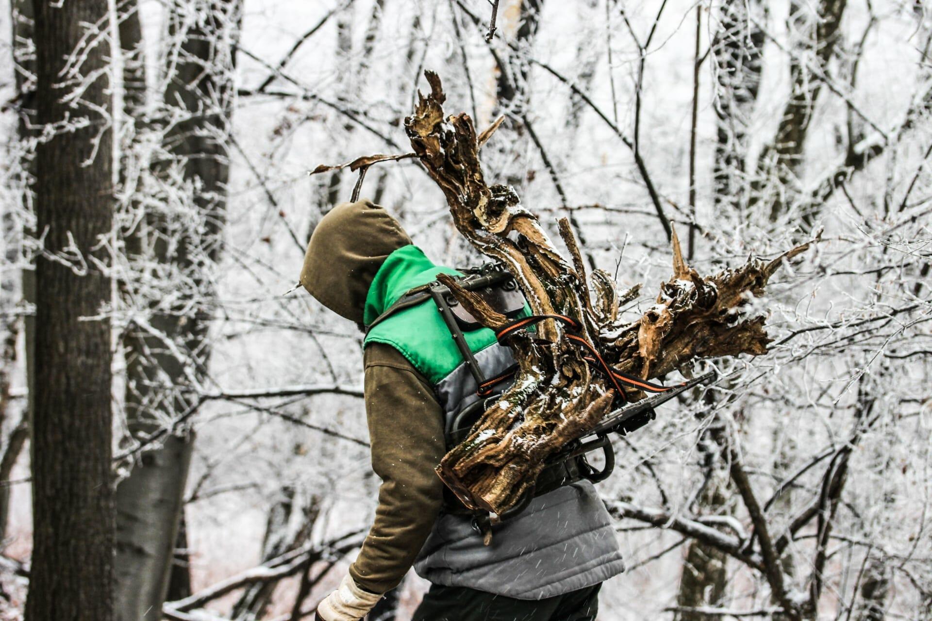 Josef Burschl beim Sammeln eines Totholz für einen Tanuki Bonsai.