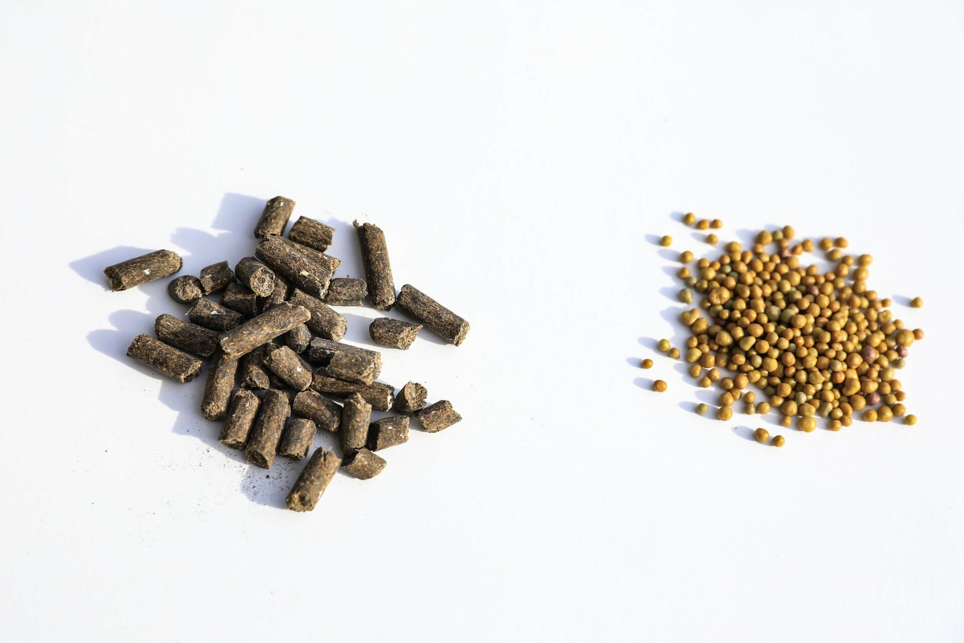 Bonsai Nährstoffpaket