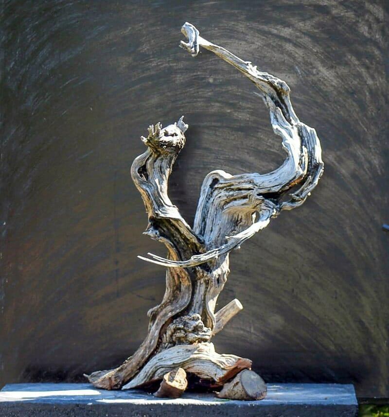Das Tanuki Bonsai Totholz